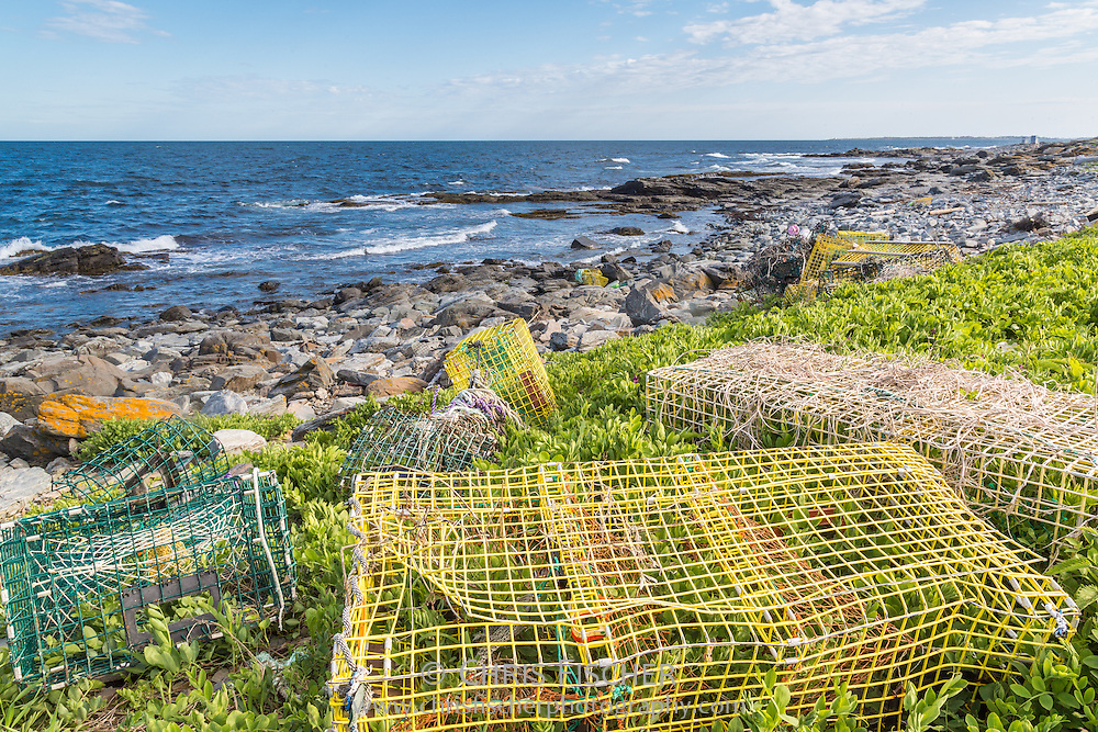 Lobster traps, knotted rope, buoys, and other debris litter the Stratton Island shoreline. Disposing of the lobster traps is an ongoing problem insofar that only licensed lobstermen and conservation officers are permitted by law to handle or pick up traps.