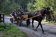 A horse and carriage take tourists along the road on Dolina Chocholowska, a hiking route in the Tatra National Park, on 17th September 2019, near Zakopane, Malopolska, Poland.