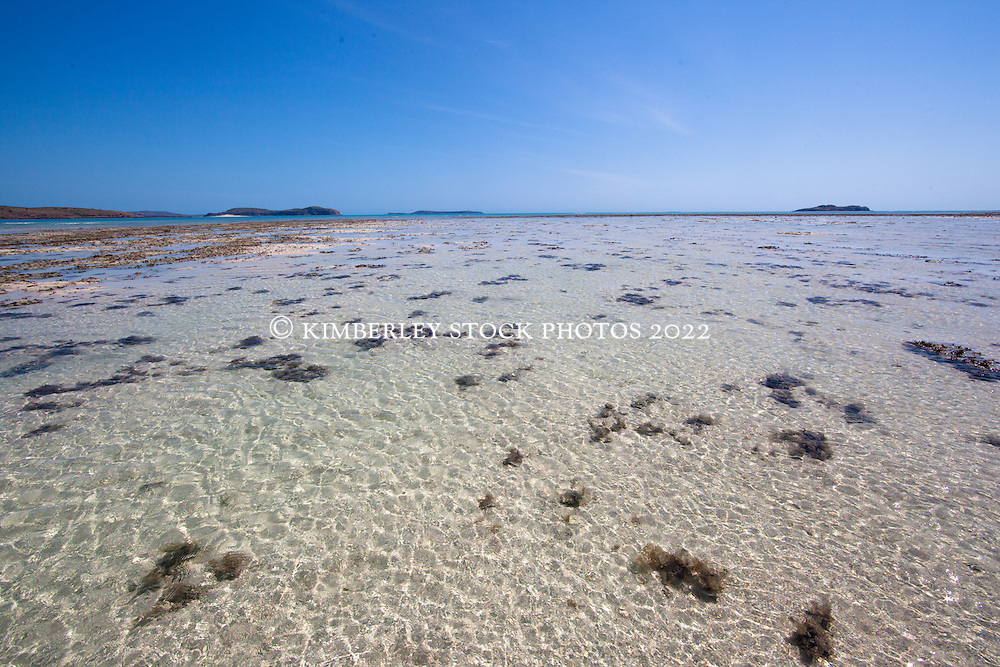 Corals lies in the middle of a sandy reef on Augustus Island at the northern end of Camden Sound.