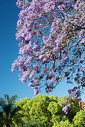 Sydney in Colour Spring/Summer 2014