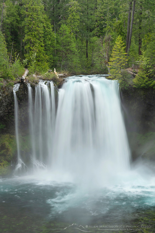 Koosah Falls of the McKenzie River, Cascade Range Oregon