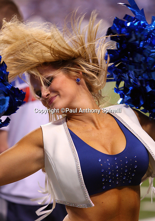 An Indianapolis Colts cheerleader does a hair flip during a dance routine at the AFC Championship football game against the New York Jets, January 24, 2010 in Indianapolis, Indiana. The Colts won the game 30-17. ©Paul Anthony Spinelli