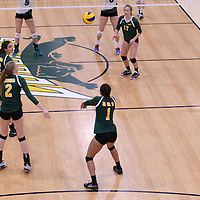 3rd year outside hitter Ashlee Sanford (1) of the Regina Cougars in action during Women's Volleyball home game on November 19 at Centre for Kinesiology, Health and Sport. Credit: Arthur Ward/Arthur Images