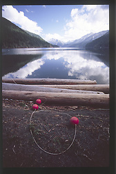 Lake Crescent from Fairholm, Olympic National Park, Washington, US