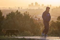 © licensed to London News Pictures. London, UK 14/11/2013. People walking their dogs in Hampstead Heath, London on a clear autumn morning on November 14, 2013. Photo credit: Tolga Akmen/LNP