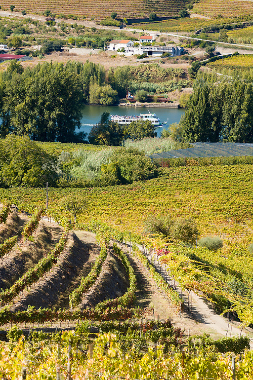R'iver cruiser passes vineyards of Quinta do Mourao port wine lodge and estate on wine cruise along the River Douro north of Viseu in Portugal