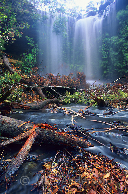 A rainforest waterfall and broken branches and debri after a thunderstorm, Upper National Falls, Royal National Park, Australia.