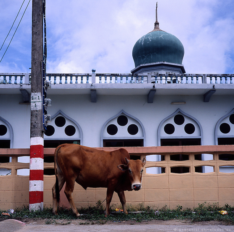 Mosque in a village in the south of Thailand where the majority of the population is Mushlim