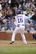 CHICAGO - MAY 17:  Darwin Barney #15 of the Chicago Cubs bats against the New York Mets on May 17, 2013 at Wrigley Field in Chicago, Illinois.  The Mets defeated the Cubs 3-2.  (Photo by Ron Vesely/MLB Photos via Getty Images)  *** Local Caption *** Darwin Barney