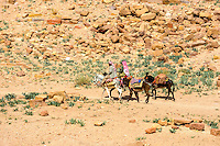 Petra is Jordan's most visited tourist attraction. Horse riders.
