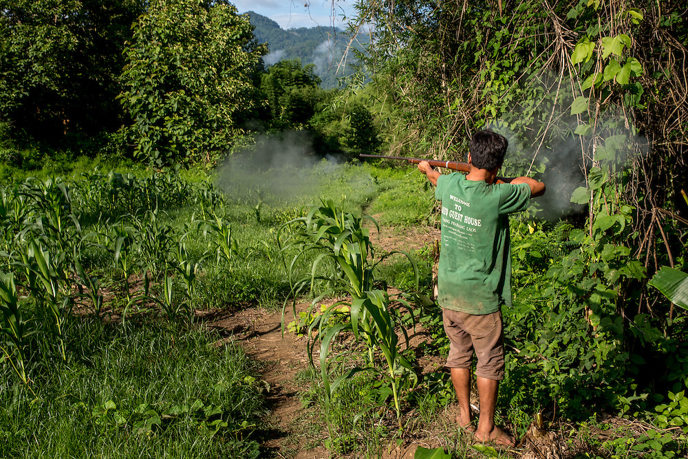 A man takes a shot at a bird using a homemade shotgun near the village of Khoc Kham.