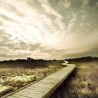 A winding wooden jetty
