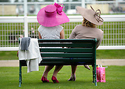 © Licensed to London News Pictures. 21/06/2012. Ascot, UK Two women wearing hats sit on a bench. Ladies Day at Royal Ascot 21st June 2012. Royal Ascot has established itself as a national institution and the centrepiece of the British social calendar as well as being a stage for the best racehorses in the world.. Photo credit : Stephen Simpson/LNP