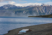 North America, Canada, Yukon Territory, Destruction Bay, Kluane National Park and Reserve.  Duststorm over the Slims River Delta