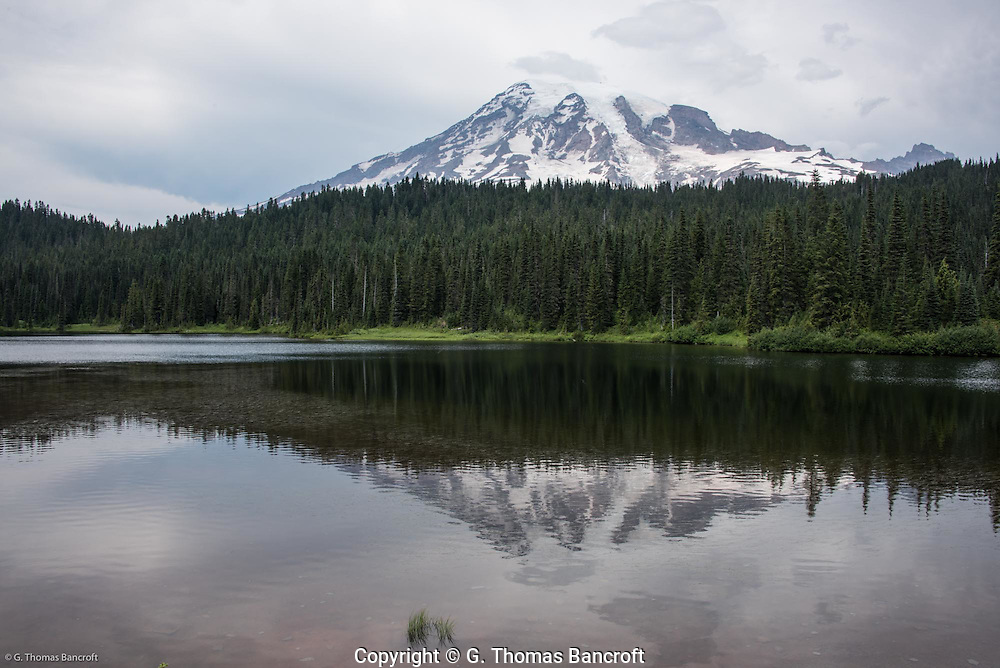 Mt Rainier forms a reflection in Reflection Lake.