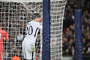 Tottenham Hostpur midfielder Deli Alli (20) craddling net during the Champions League match between Tottenham Hotspur and Real Madrid at Wembley Stadium, London, England on 1 November 2017. Photo by Matthew Redman.