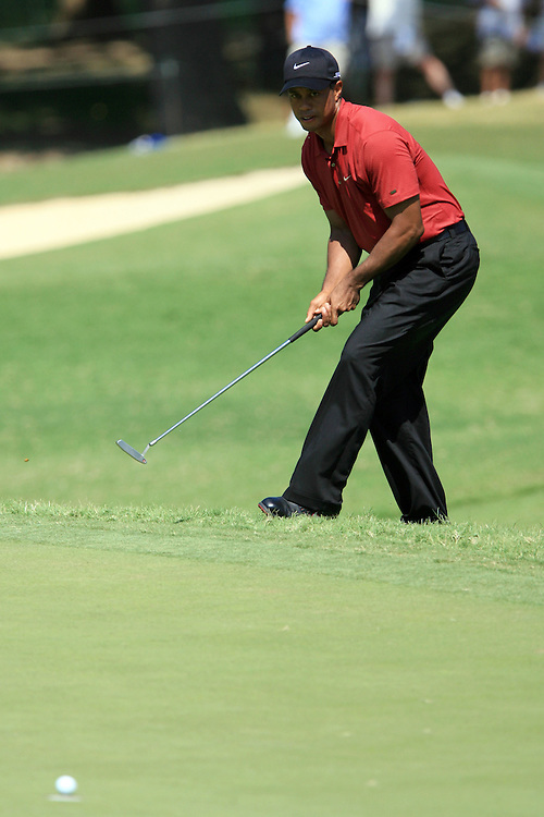 12 August 2007: Tiger Woods watches his putt on the 8th as it sinks for a birdie during the final round of the 89th PGA Championship at Southern Hills Country Club in Tulsa, OK.