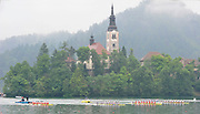 Bled, SLOVENIA,  Men's  Eights, GBR M8+ winning the gold medal,  at the 1st FISA World Cup. Third day. Bow, Nataniel REILLY-O'DONNELL, James CLARKE, James ORME, James FOAD, Mohamad SBIHI, Greg SEARLE, Peter REED, Daniel RITCHIE and Cox Phelan HILL. Rowing Course. Lake Bled.  Sunday  30/05/2010  [Mandatory Credit Peter Spurrier/ Intersport Images]