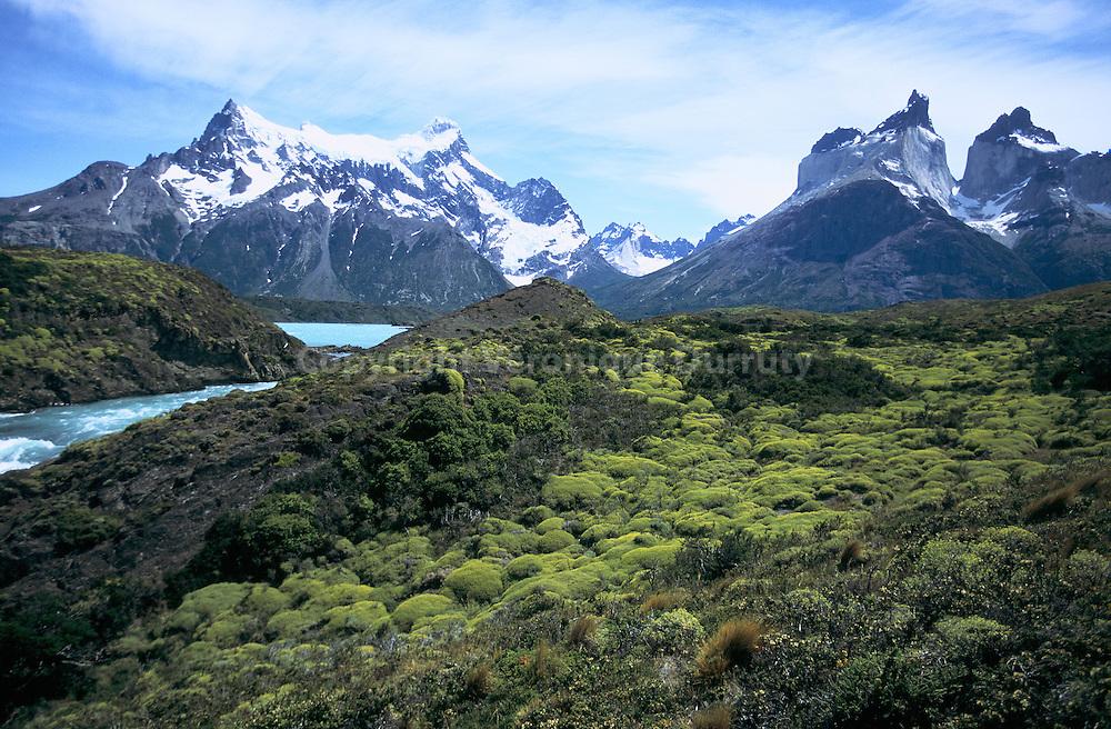 Le Parc National Torres del Paine (Parque Nacional Torres del Paine) est un parc national du Chili situe entre la Cordillere des Andes et la steppe de Patagonie.  D'une surface de 200 000 hectares environ, le parc fut cr?? le 13 mai 1959. Il a ete declare reserve de biosphere, le 28 avril 1978 par l'UNESCO.  Torres del Paine National Park is a Chilean National Park comprising mountains, glaciers, lakes and rivers. The Cordillera del Paine is the centerpiece of the park. It lies in a transition area between the Magellanic subpolar forests and the Patagonian Steppes. The park is located 112 north of Puerto Natales and 312 km north of Punta Arenas. Bernardo O'Higgins National Park is its neighbour to the west, while Los Glaciares National Park is located to the north in Argentine territory.