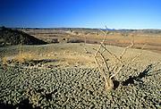 Badlands in the Missouri River Breaks above the Missouri River. Missouri River Breaks Naional Monument, Montana