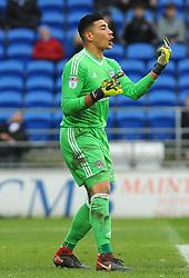 Neil Etheridge of Cardiff City gives orders - Mandatory by-line: Nizaam Jones/JMP- 13/01/2018 -  FOOTBALL - Cardiff City Stadium - Cardiff, Wales -  Cardiff City v Sunderland - Sky Bet Championship