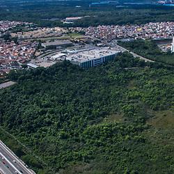 """""""Mata Paludosa (mata de brejo) fotografado em Vitória, Espírito Santo - Brasil. Registro feito em 2019.<br /> ⠀<br /> ⠀<br /> <br /> <br /> <br /> ENGLISH: Swamp forest photographed in Vitória, Espírito Santo - Brasil. Picture made in 2019."""""""