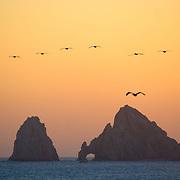 Land´s end, Cabo San Lucas, BCS. MX.