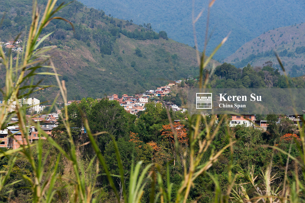 Houses on the hillside, Merida, Merida State, Venezuela