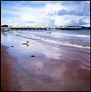 Paignton Beach, Devon, 2010