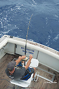 skipper Steve Campbell fights a fish on his charter vessel Reel Addiction, off Hunga Island, Vava'u, Kingdom of Tonga, South Pacific