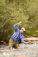 A man enjoying flyfishing during summer on the Big Thompson River near estes Park Colorado.