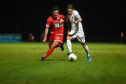 Dejan Petrovič of Aluminij and Stefan Savić of Olimpija during football match between NK Aluminij and NK Olimpija in 6st Round of Prva liga Telekom Slovenije 2019/20, on August 18, 2019 in Sportni park NK Aluminij, Kidricevo, Slovenia. Photo by Milos Vujinovic / Sportida