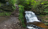 Mohican Falls at the Ricketts Glen State Park, Pennsylvania.