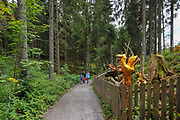 wood carvings along the trail of Schlühuwanapark, Grafenhausen, State Park , black forest, Germany