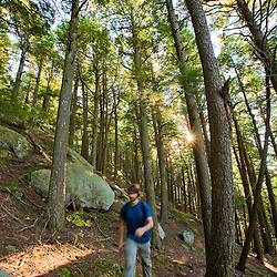 A man hiking through a grove of hemlocks on North Mountain in New Hampshire's Pawtuckaway State Park.