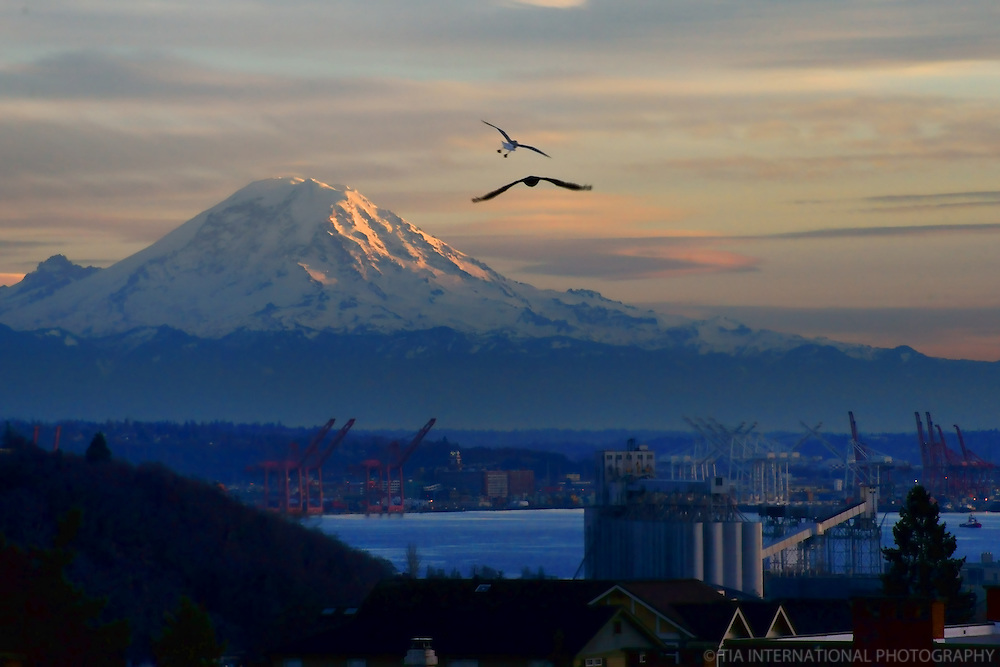 Mount Rainier & Port of Seattle