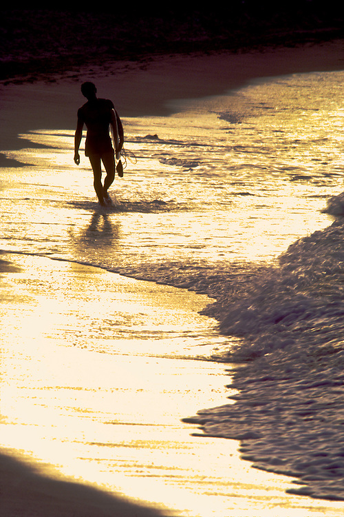 Surfer walking and carrying his board across the yellow sun reflecting waterline at sunset at Jobos Beach, Isabela, Puerto Rico, Playa Jobos