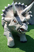 Triceratops three horned Dinosaur