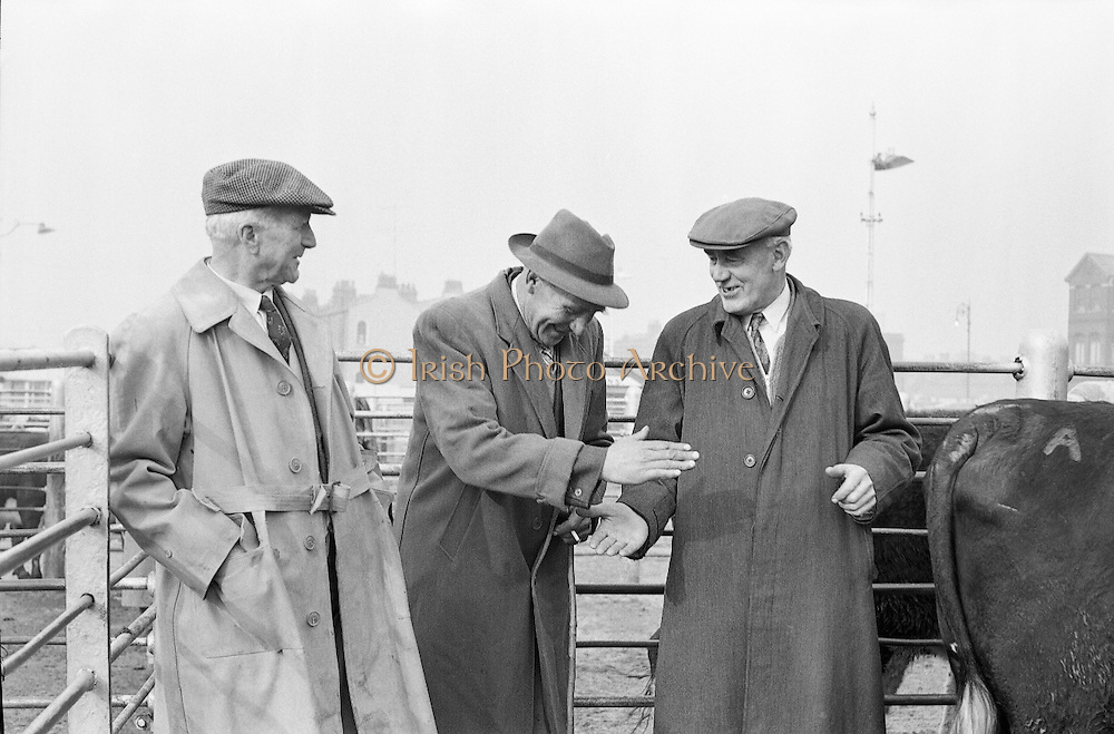 Salesman Richard Kenny watches a bargain struck between Abbey Thompson and George Walker at the Dublin Cattle Market..25.04.1962