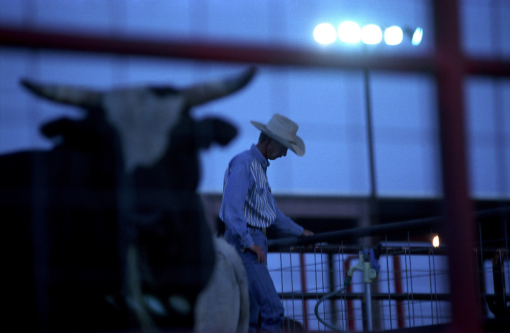 A cowboy waters the stock during a rodeo as a bull looms in the foreground