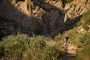 Towsley Canyon Trails