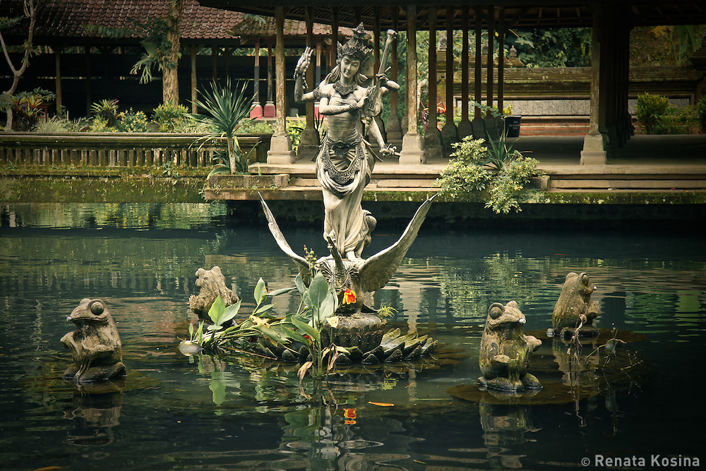 Pictoresque fish pond in Holy Spring Temple - in Balinese Pura Gunung Kawi Sebatu in Central Bali is full of pools, shrines and pavilions, and is dedicated to the Goddess of Lake Batur.