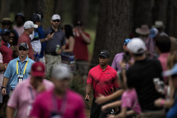 May 13, 2018 - Ponte Vedra Beach, FL, USA - The Players Championship 2018 at TPC Sawgrass..Tiger Woods walks from 15 green to 16 tee. (Credit Image: © Bill Frakes via ZUMA Wire)