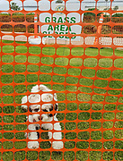 Stay Out of the Park Fencing during Corona Virus Government Shutdown