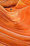 The Wave. Coyote Buttes North permit area, Vermilion Cliffs National Monument in Arizona.
