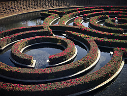 """Detail of the 134,000 square-foot Central Garden by artist Robert Irwin at the J. Paul Getty Center, located in Los Angeles. A walkway traverses a stream ending in a pool of a maze of azaleas. The collection of the J. Paul Getty Museum on display at the Getty Center includes """"pre-20th-century European paintings, drawings, illuminated manuscripts, sculpture, and decorative arts; and 19th- and 20th-century American and European photographs"""". The museum is one of the most visited museums in the United States with an estimated 1.8 million visitors annually."""