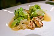 Vienna, Austria. The &quot;Steirereck&quot; with award winning Chef Heinz Reitbauer Junior is probably Vienna's best restaurant.<br /> Puntarelle mit Kerbelwurzeln, Karpfen-Milch &amp; Anis-Aromen (Puntarella with Chervil Root, Carp Milt &amp; Aniseed Aromas.)