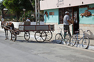 Horse and wagon delivering fish  in Niquero, Granma, Cuba.