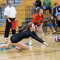 Monta Vista-Danville #6 Allie Rouse vs Homestead Girls Volleyball in the CIF Division II Northern regional tournament at Homestead High School, Cupertino CA on 11/6/18. (Photograph by Bill Gerth)(Homestead 3 Monta Vista-Danville 1)