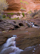 "Erosional cascade on Coyote Creek; Coyote Gulch; Grand Staircase-Escalante National Monument; Kane County, UT;  Lat =  37°24'54.95""N; Long = 111° 2'1.12""W"